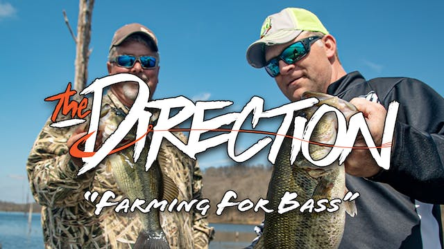 Farming For Bass • The Direction