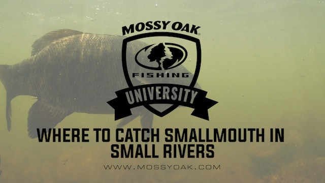 Where To Catch Smallmouth Bass In Small Rivers