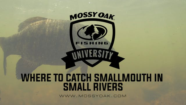Where To Catch Smallmouth Bass In Sma...