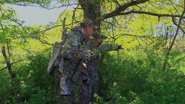 Midwest Gobblers • Turkey Hunting in Missouri