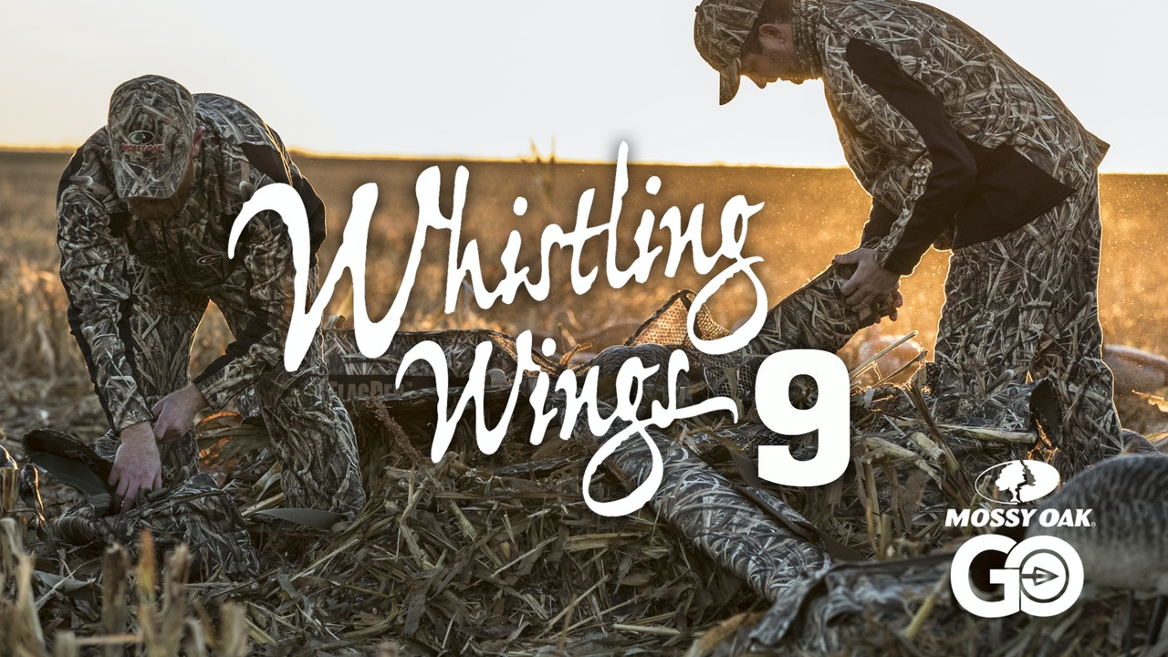 Whistling Wings 9