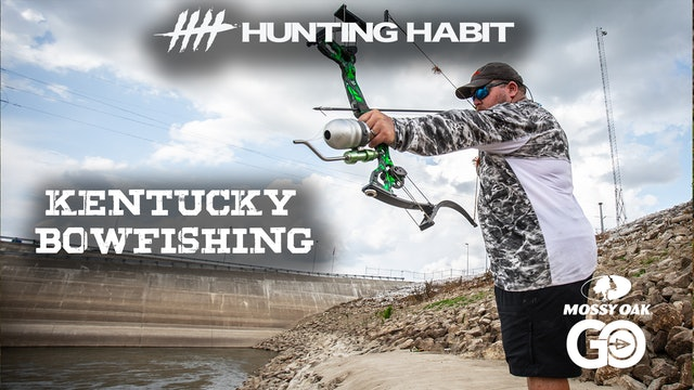 Hunting Habit · Bowfishing Silvers in Kentucky