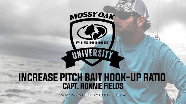 Increase Pitch Bait Hook-Up Ratio • Mossy Oak University