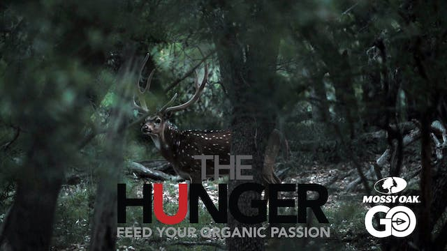 Lone Star Chital • The Hunger