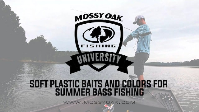 Best Soft Plastic Bait Style and Color for Summer Bass • Mossy Oak University