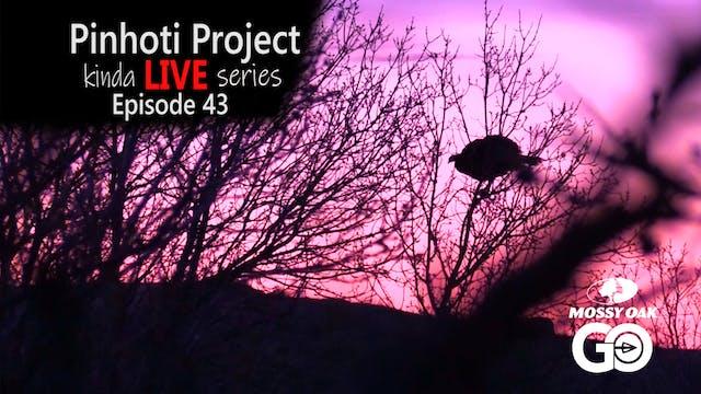 Kinda Live • Episode 43 • Pinhoti Pro...