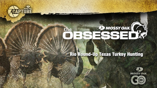 Rio Round Up • South Texas Turkey Hunting