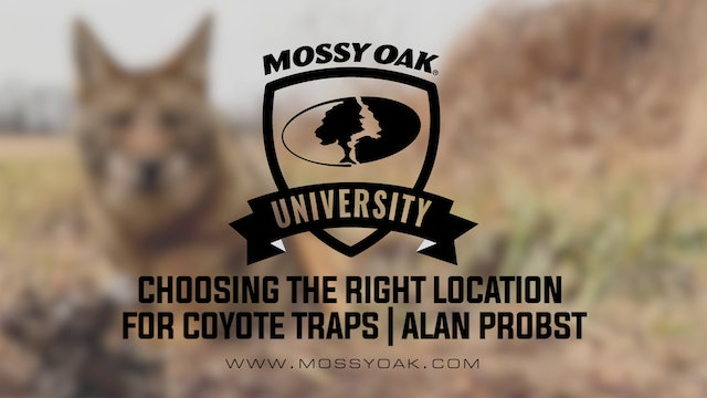 Choosing the Right Location For Coyote Traps with Alan Probst