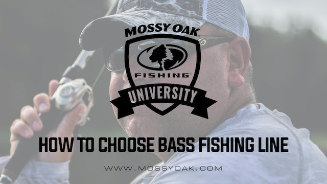How to Choose the Right Bass Fishing Line