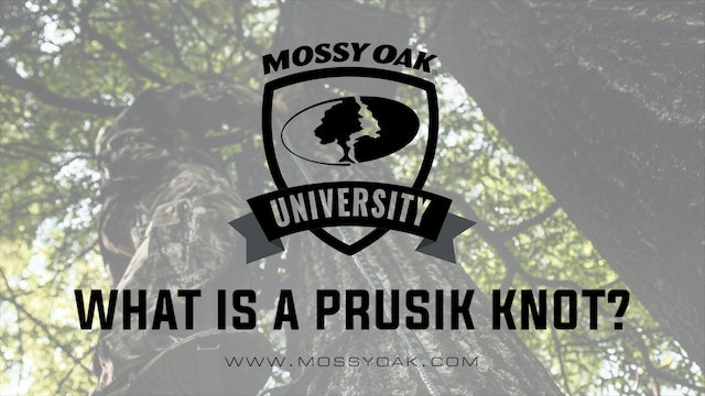 What is a Prusik Knot • Tree Stand Safety Tips