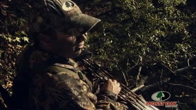 Enon's Law • Bow Hunting Whitetails in Alabama