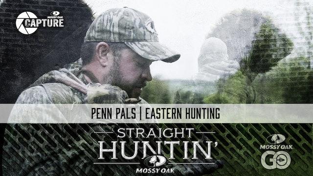 Penn Pals • Eastern Hunting • Straight Huntin'