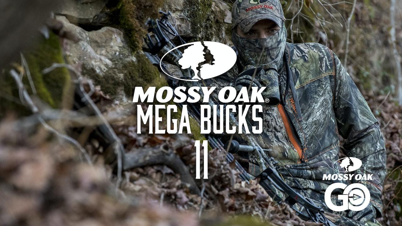 Mega Bucks 11