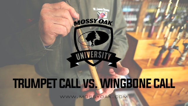 Trumpet Call vs. Wingbone Call