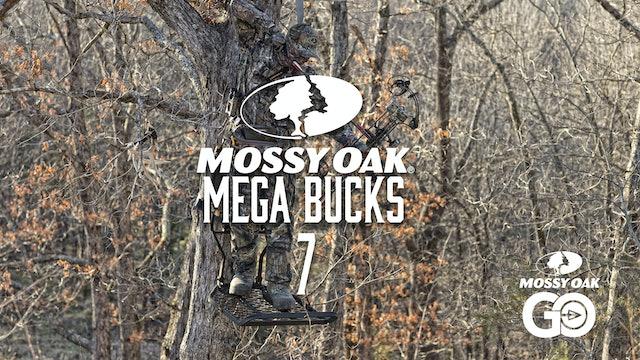 Mega Bucks 7