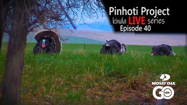 Kinda Live • Episode 40 • Pinhoti Pro...