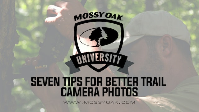 7 Tips for Better Trail Camera Photos