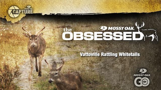Vatoville Deer Rattling • Texas Deer Hunting