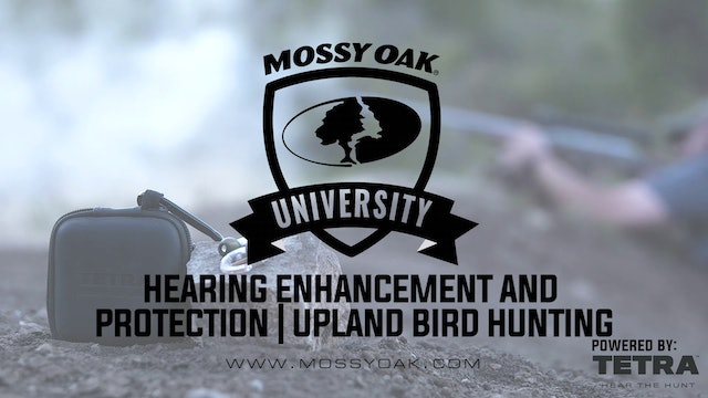 Tetra Hearing Enhancement and Protection for Upland Bird Hunting