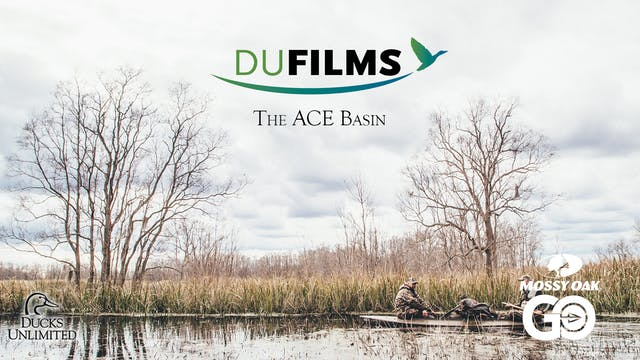 The ACE Basin • DU Films