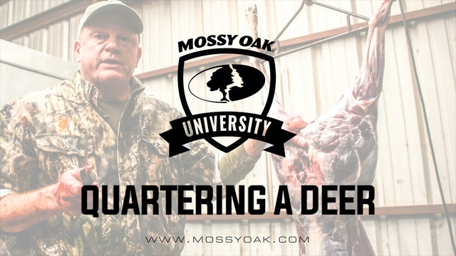 How To Butcher and Process a Deer at Home - Quartering a Deer