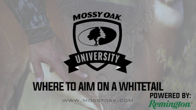 Where to Aim • Mossy Oak University