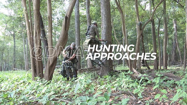 Hunting Approaches