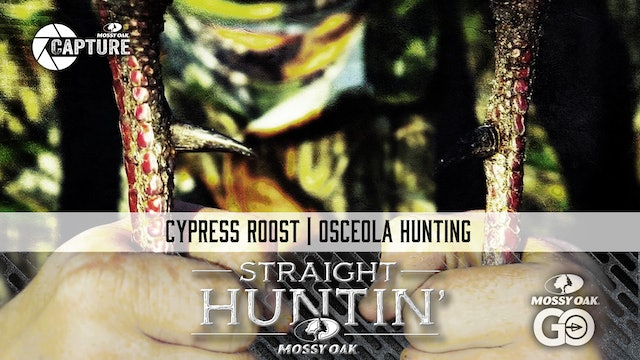 Cypress Roost • Straight Huntin'