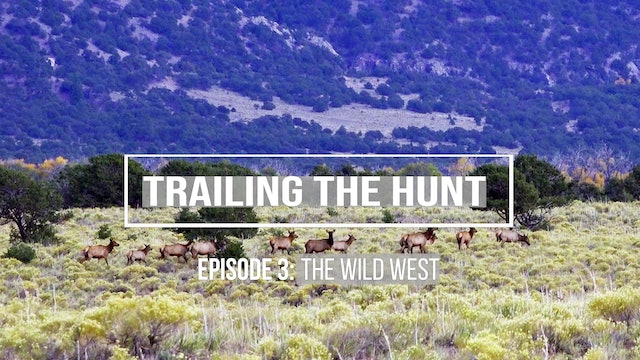 Trailing the Hunt Ep 3 • The Wild West