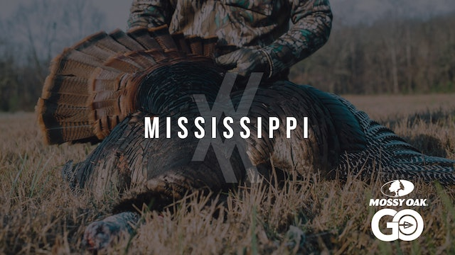 Mississippi • Undivided