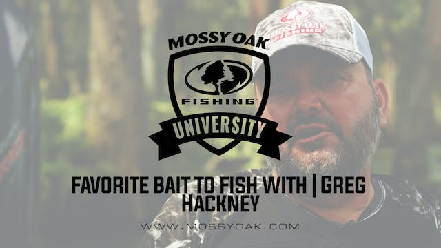 Favorite Bass Fishing Bait - Greg Hac...