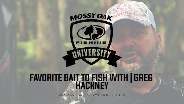 Favorite Bass Fishing Bait - Greg Hac...