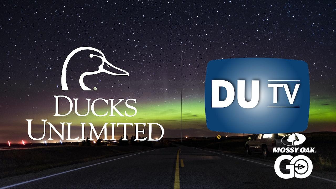 2017 DU TV