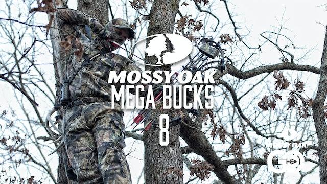 Mega Bucks 8