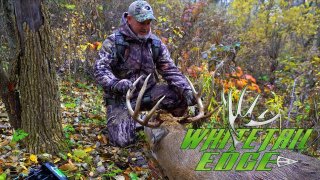 Illinois • Whitetail Edge
