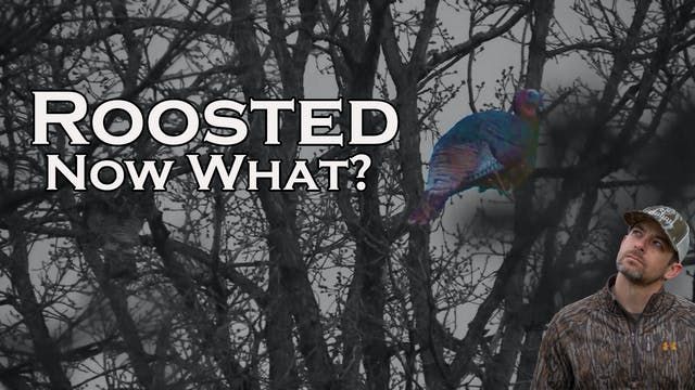 Takeaways • Roosted • Pinhoti Project