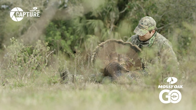 Cypress Swamp Oceollas • Turkey Hunting in the Florida Marsh