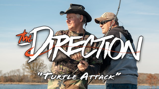TurtleAttack • The Direction