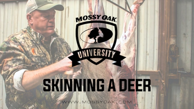 How To Butcher and Process a Deer at Home - Skinning a Deer