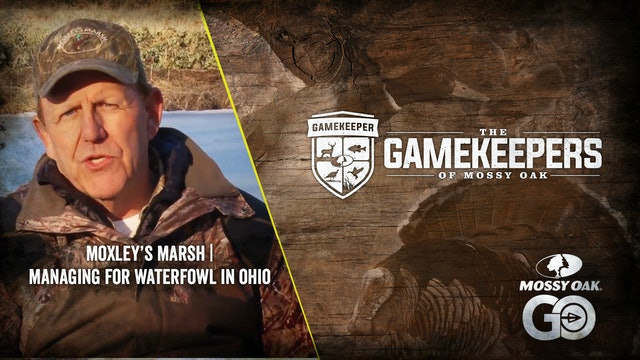 Moxley's Marsh • Managing for Waterfowl in Ohio