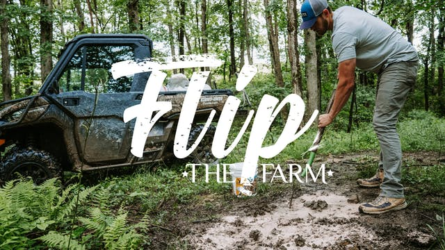 Dead LInes • Flip The Farm