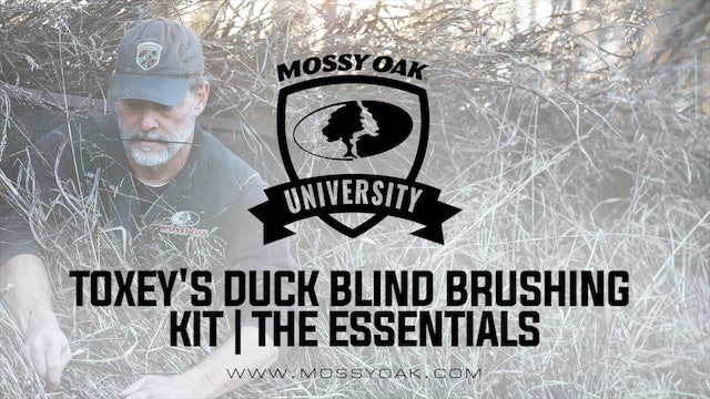Toxey's Duck Blind Brushing Kit | The Essentials