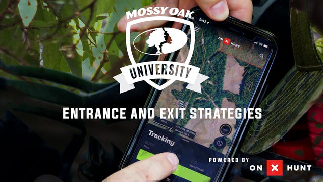 Entrance and Exit Hunting Strategies ...