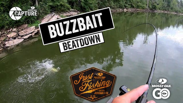 Buzzbait Beatdown • Just Fishing with...