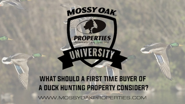 What Should A First Time Buyer Of Duck Hunting Property Consider?