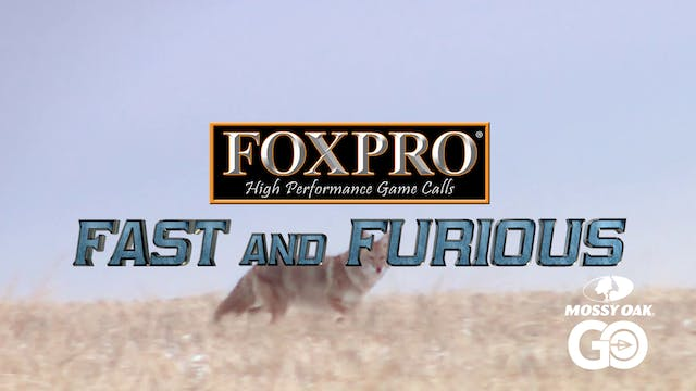FOXPRO 1102 Alberta • Fast and Furious