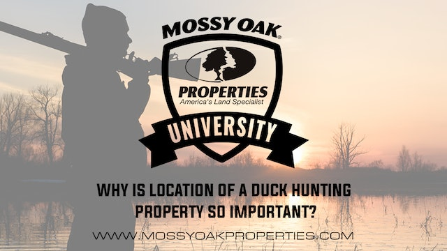 Why Is Location Of A Duck Hunting Property So Important?