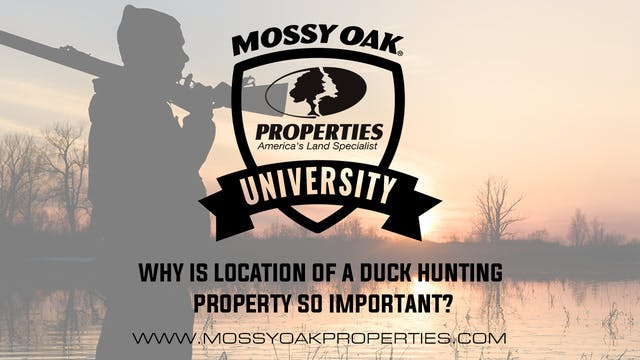 Why Is Location Of A Duck Hunting Pro...