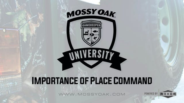 Importance of Place Command • Mossy O...