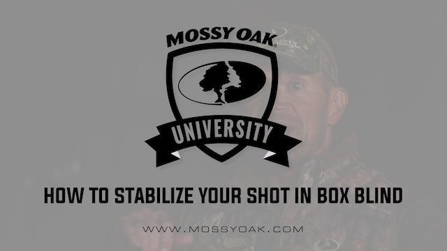 How To Stabilize Your Shot In A Box Blind • Shooting Tips